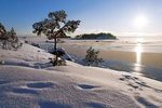rsz_winter_sun3